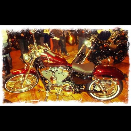 Harley-Davidson Sportster 72 - © Marion