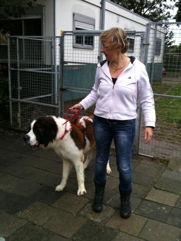 Dagje meehelpen bij het dierenasiel Breda op 5 oktober vorig jaar.