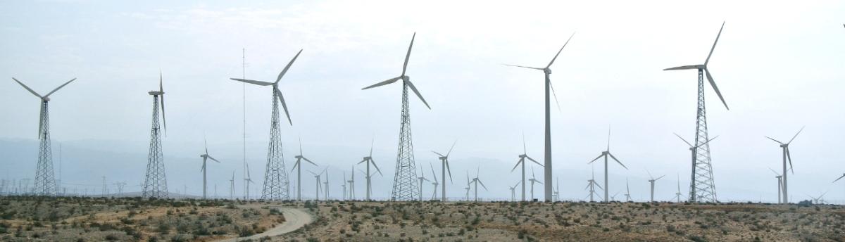 Verhaal in Zes Woorden met Beeld: Wind