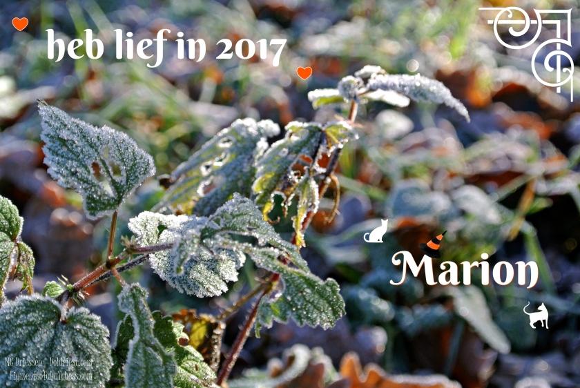 161224-2017-doldriest