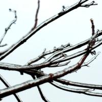 Japans Gedicht: Pauze