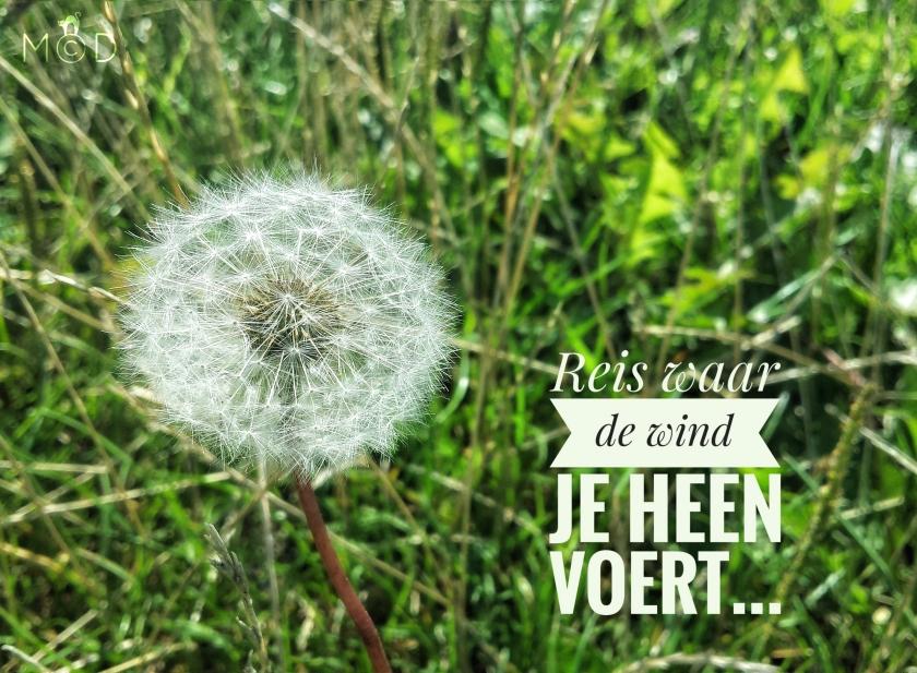 170807wind