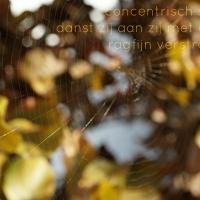 Japans Gedicht: Spinsels