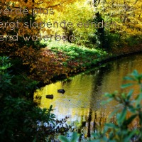 Japans Gedicht: Drijvende Herberg