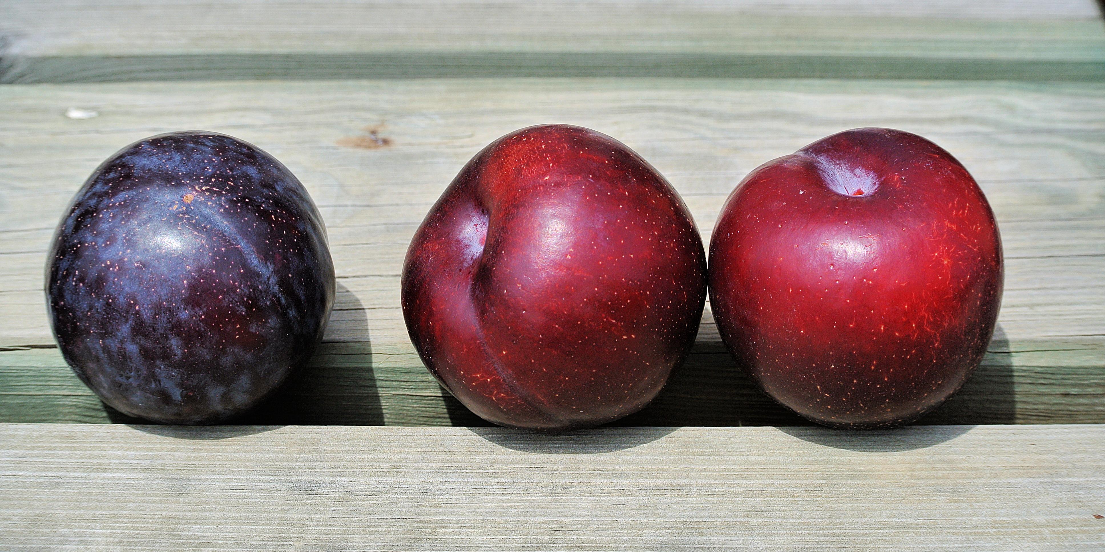 Zeswoordverhaal: Fruit